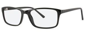 ZP4011 Glasses By ZIPS