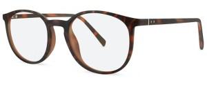 ZP4037 Glasses By ZIPS