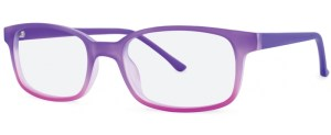 ZP4029 Glasses By