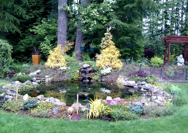 glass gardens nw's uncommon