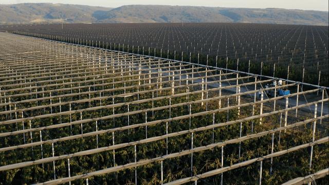 Delta Agrar zapošljava u Zaječaru