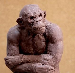 Ape Sketch