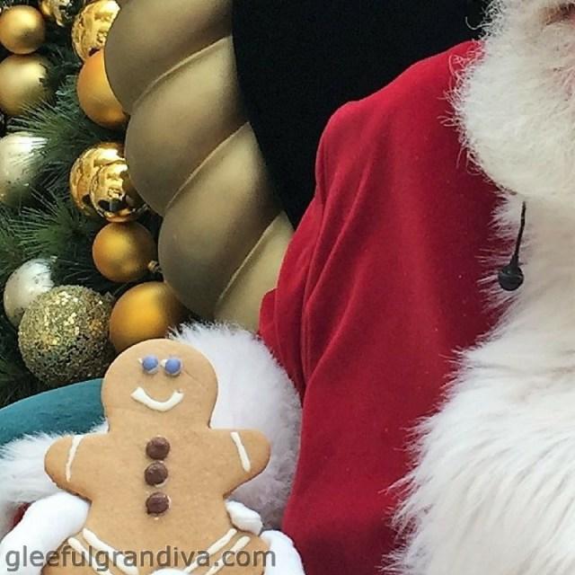 Santa's surprise picture