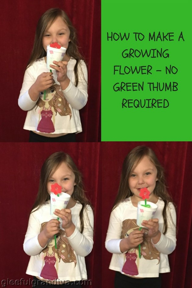 make a growing flower picture