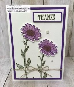 Daisy Lane Bundle Thank You Cards!