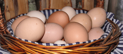 Hen and duck eggs