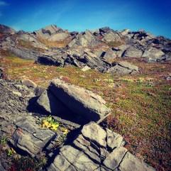 L'Ans Aux Meadows, NL Canada.
