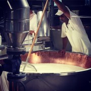 Step 2: breaking up the curds. Parmigiano-Reggiano D.O.P. factory, Modena, Italia.