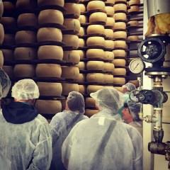 Ageing. Parmigiano-Reggiano D.O.P. factory, Modena, Italia.