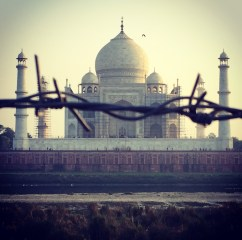 Surrounded by barbed wire. Taj Mahal, Agra, India.