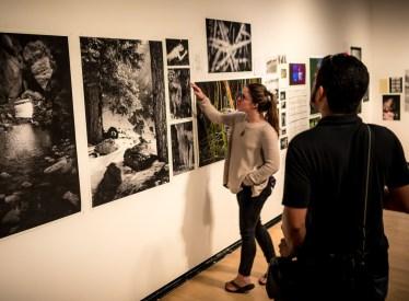 Dear Spring '15 Exhibiting Artists