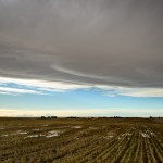 Chinook Arch
