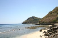 timor-2006-698