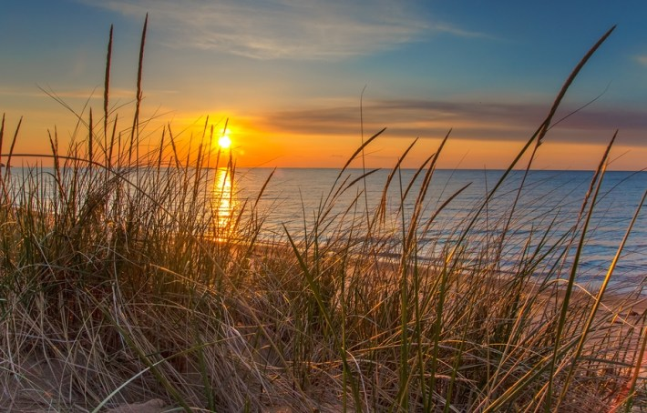 Beautiful sunrise from shore with tall grass