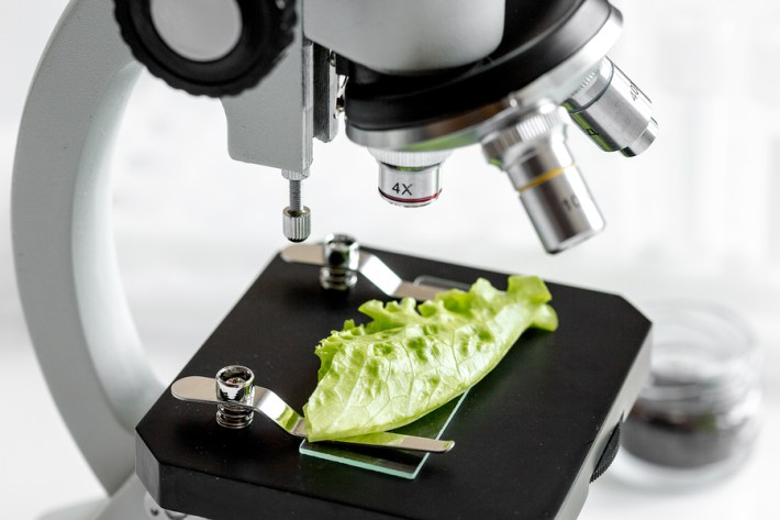 Natural product examined under microscope