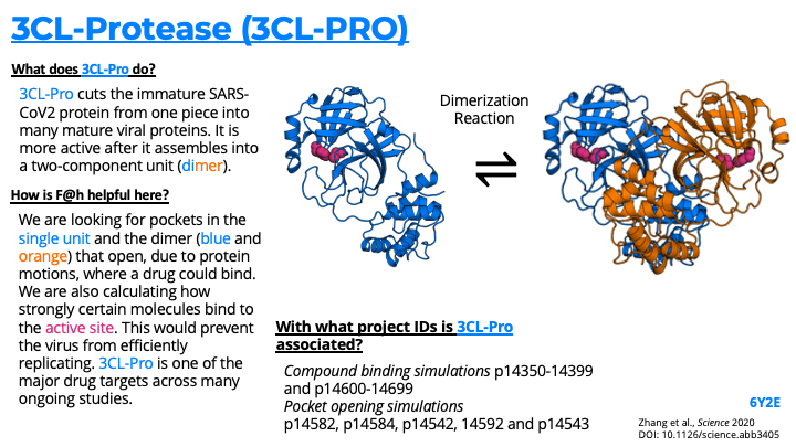 3CL-Protease