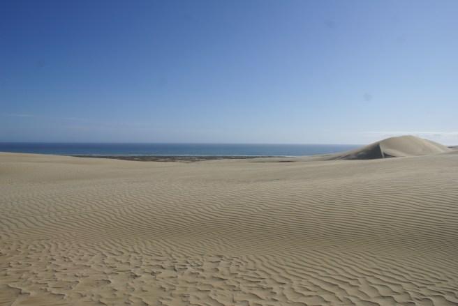 Et du haut de la dune, on peut voir la mer de Tasman.