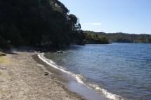 Bords du Lake Tarawera avec ses arrivées d'eau bouillante très dangereuses