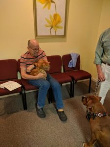 Joseph and his very relaxed cat Robert say hello to Bob's dog Rocky.