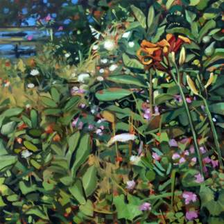 Tiger Lily by Deb Anderson