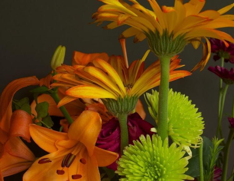 Assorted Flower Still Life