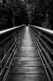 Bridge Crossing over Brandywine Creek on the Brandywine Gorge Trail by Brian Kabat