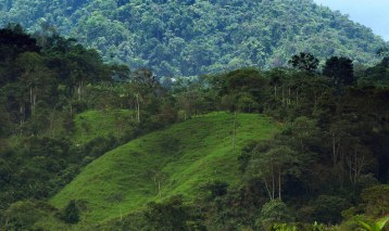 GLF 2014: Deal or no deal, experts upbeat on progress of REDD+ safeguards