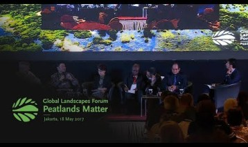 Peatlands around the world: Challenges and opportunities