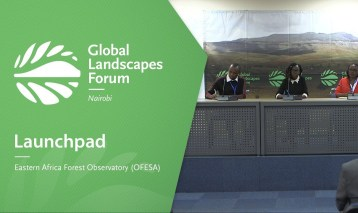 Launchpad: Eastern Africa Forest Observatory (OFESA)