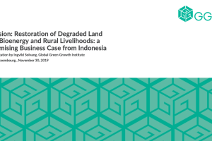 Restoration of Degraded Land for Bioenergy and Rural Livelihoods: a Promising Business Case from Indonesia