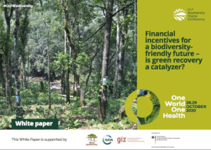 Financial incentives for a biodiversityfriendly future – is green recovery a catalyzer?