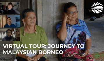 Virtual tour: Journey to Malaysian Borneo