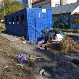 Platforma de pe strada Serghei Lazo, inindată de gunoi