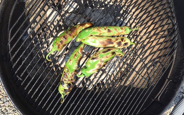 Green Chilies, Life and Rolling Stone References