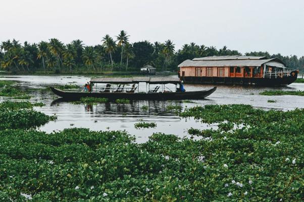 在喀拉拉邦乘着小船遊覽