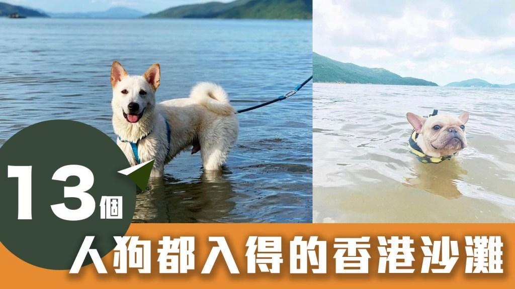 【狗狗好去處】13個人狗都入得的香港沙灘