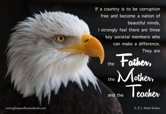 If a Country revised bald-eagles-341898