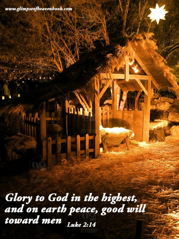 Glory to God in the highest, and on earth peace, good will toward men Luke 2:14