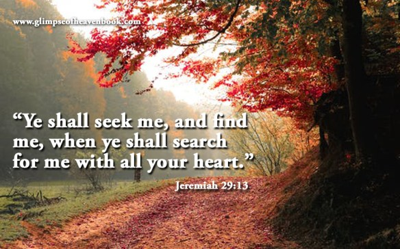 """""""Ye shall seek me, and find me, when ye shall search for me with all your heart."""" Jeremiah 29:13"""