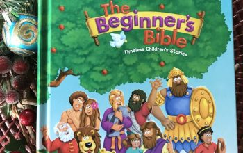 The Beginner's Bible Review