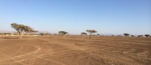 Plains in Manama