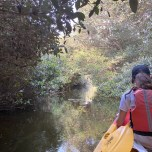 Kayaking in Ajman with Quest for Adventure