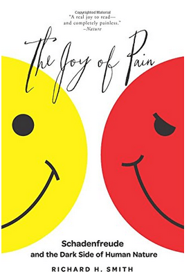 Joy of Pain cover