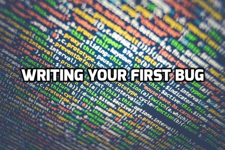 Writing Your First Bug
