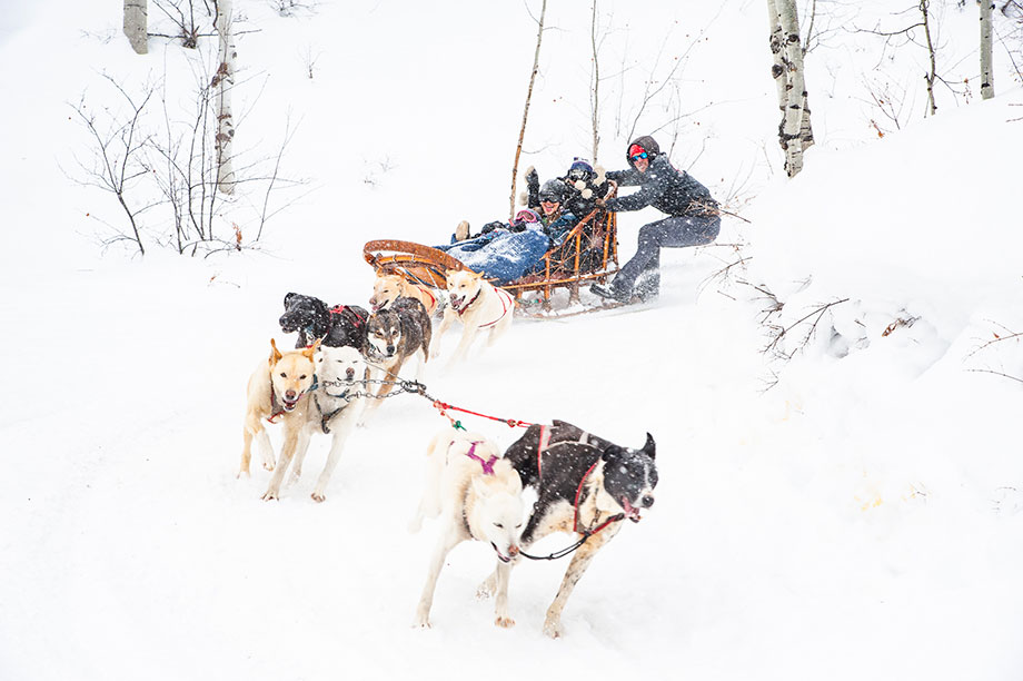 Krabloonik Dog Sledding in Aspen, Colorado.
