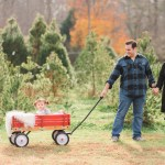 How To Survive A Holiday Family Photo Shoot Our Trip To The Christmas Tree Farm Glitter Inc