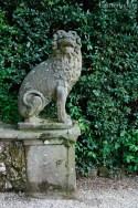 Florentine Lion