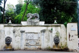 Lion in Borghese