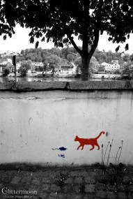 Cat + Mouse II. Passau, Germany.