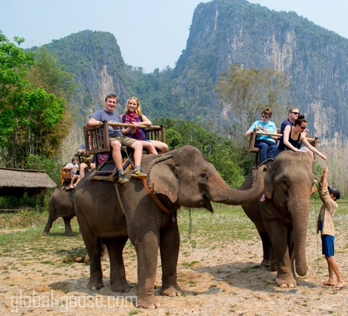 Only moments before we nearly died in an elephant stampede